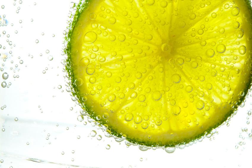 Lemon_61541437_S